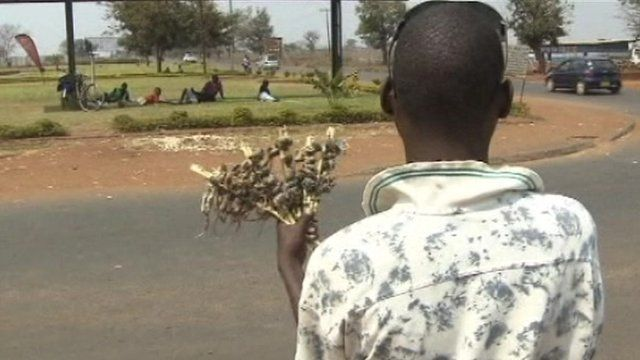 Young men in Malawi sell cooked mice to make money