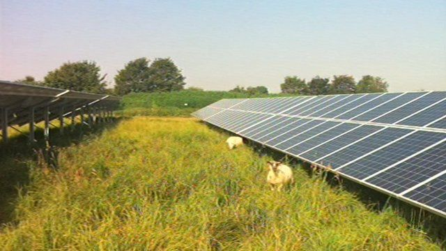 The solar farm would be able to provide grazing land for animals