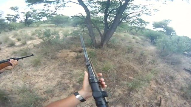 Poachers hold guns