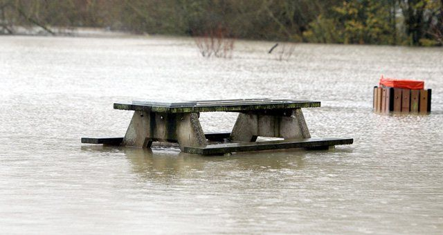 Bench in flooded park