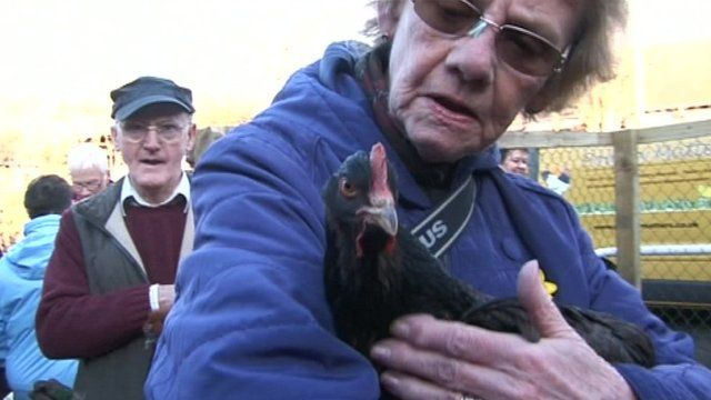 Woman with hen