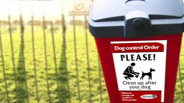 Dog mess bin