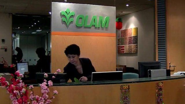Olam head quarters