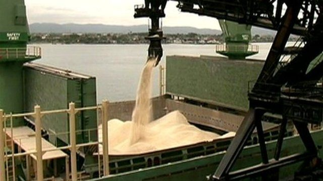 Soybeans at Port of Santos