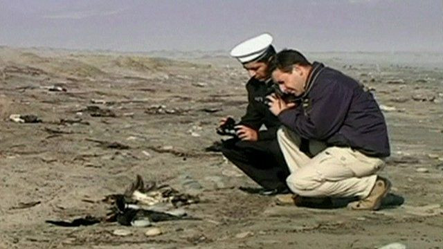 Police officials take photos of dead birds