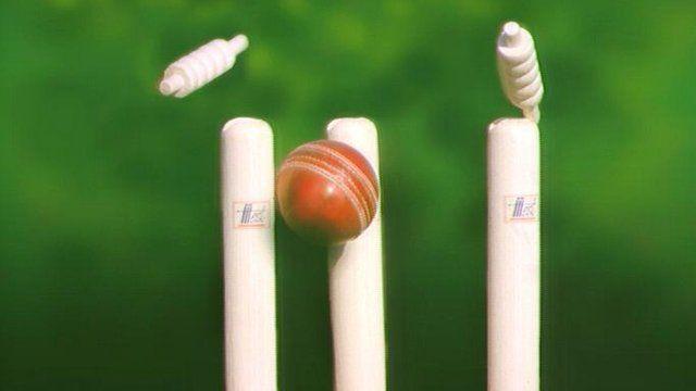 Cricket ball hitting stumps generic