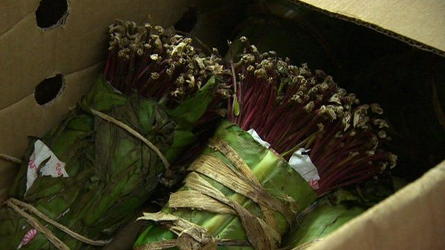 Bundles of khat in a box