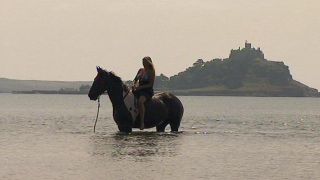 Horse and rider in the sea