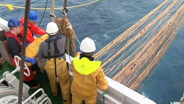 Fishermen working with nets