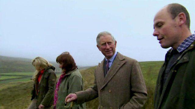 Prince Charles visiting a hill farm