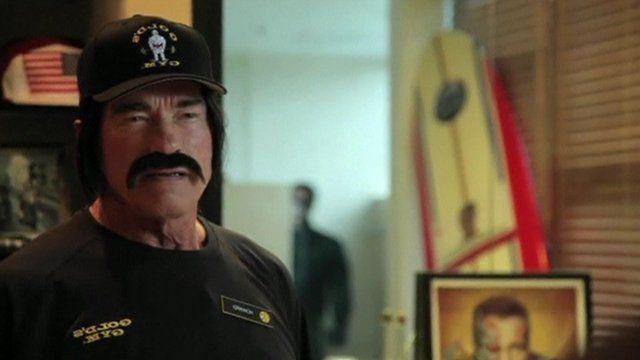Arnold Schwarzenegger in disguise