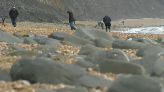 Fossil hunters on the beach