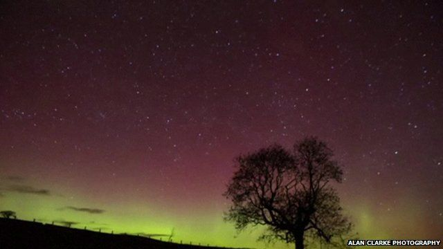 Still from footage by Alan Clarke Photography shows tree silhouetted against Northern Lights in Northumberland