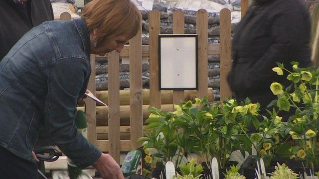 Woman looks at plants at garden centre