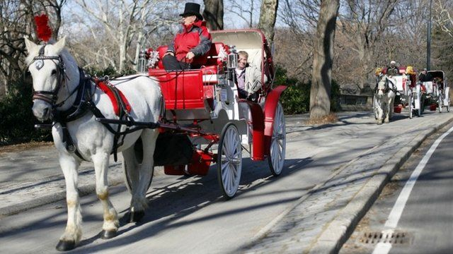 """horse-drawn carriage roll through New York""""s Central Park"""