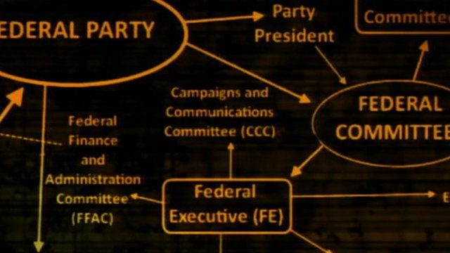 Graphic of Lib Dem party structure