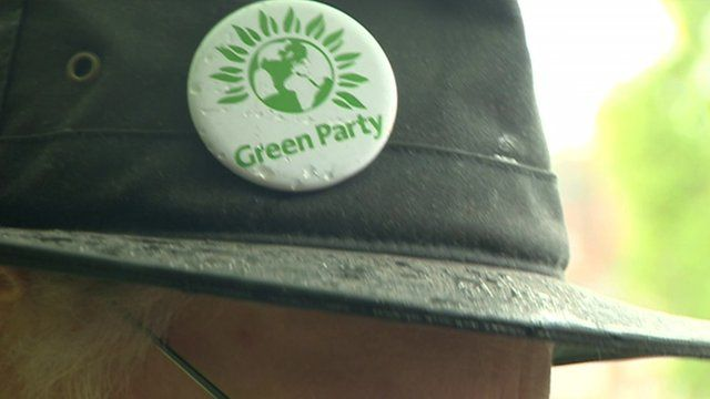 Green party badge