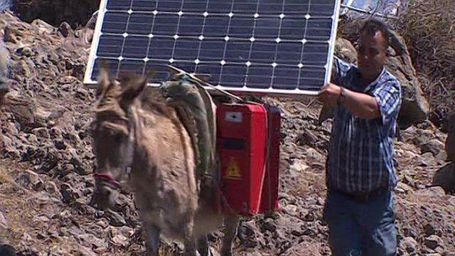 Donkey with solar panel