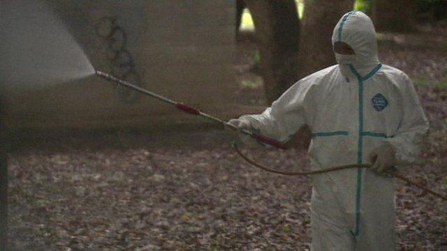 Person spraying Yoyogi Park for dengue Fever