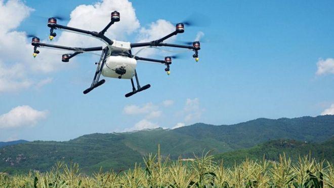 DJI crop spraying drone
