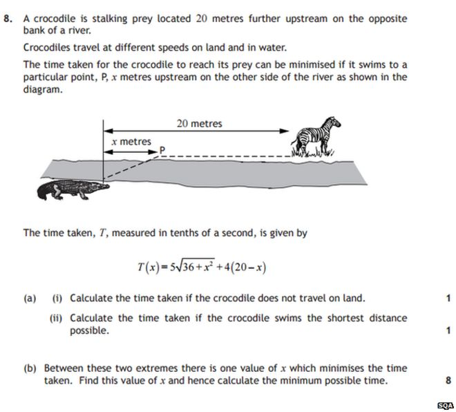 math worksheet : crocodile maths question  was challenging bbc news : Maths Exam Paper For Grade 6