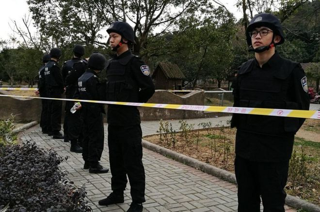 Картинки по запросу В зоопарке Китая тигр загрыз упавшего в клетку мужчину
