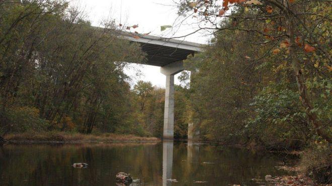В США двое детей выжили при падении с 30-метрового моста