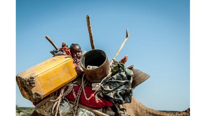 La peor sequía en 50 años/ Región de Afar / Etiopía
