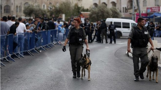 Israeli security personnel patrol with dogs in East Jerusalem (09/10/15)