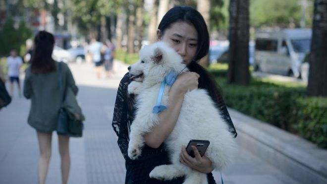 A woman carries her dog as she walks along a street in Beijing