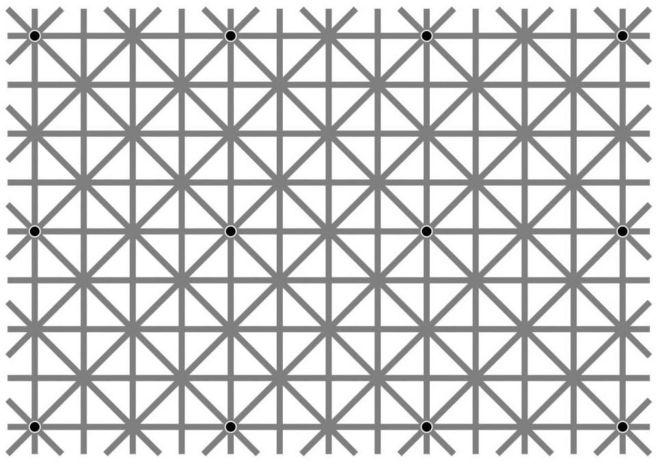 La ilusión óptica de Jacques Ninio