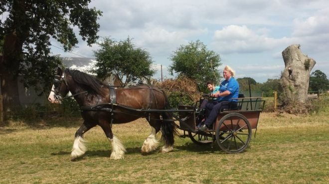 RDA carriage riding