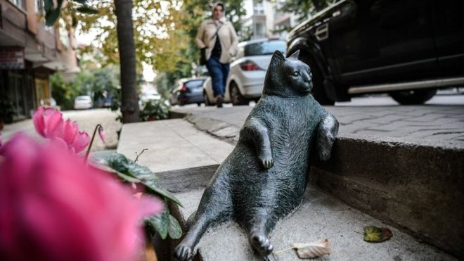 Social Outcry Brings Back Cat Statue