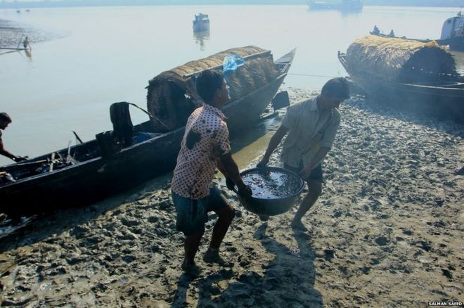 People collecting the oil.