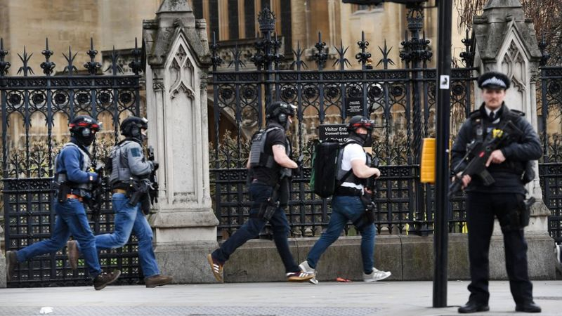 Armed police at Westminster