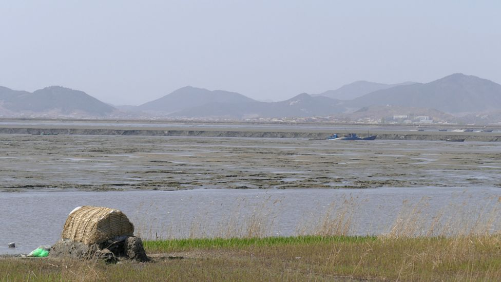 Mudflats in the northwest of North Korea