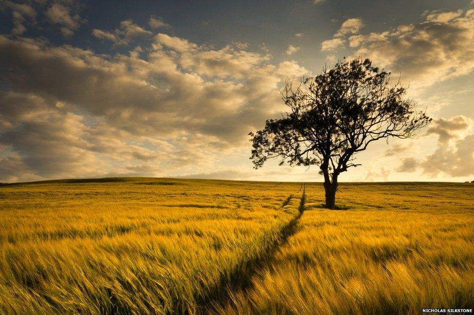 In pictures: Ordnance Survey photo competition - BBC News
