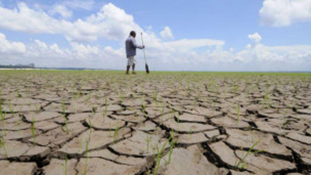 Século 20 tem maiores temperaturas em 1,4 mil anos, diz estudo ...