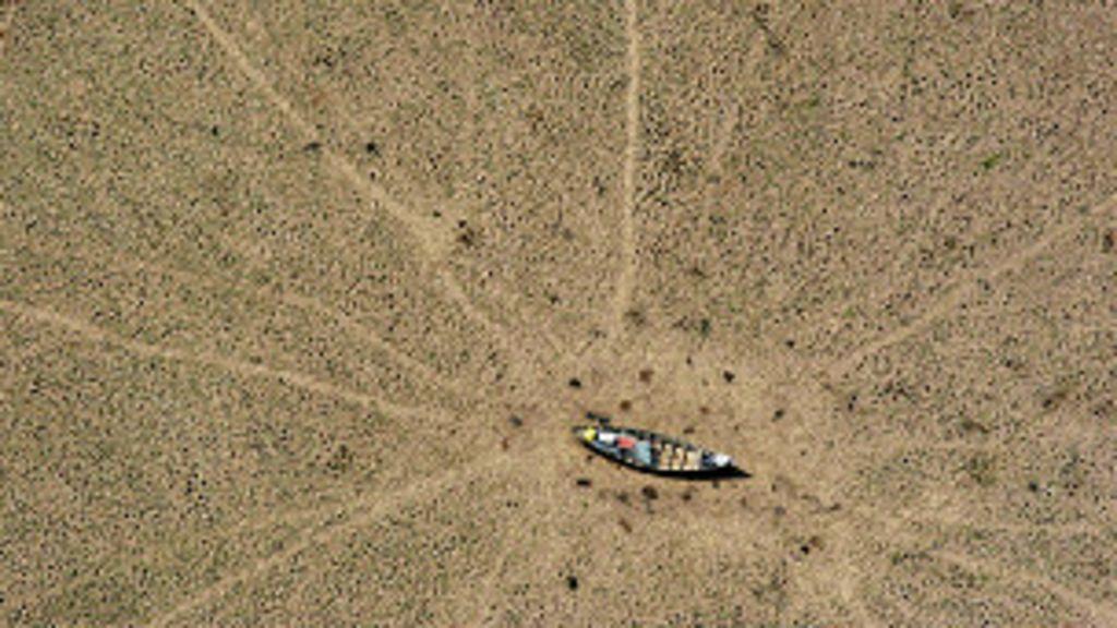 Desmatamento compromete geração de energia, diz estudo - BBC ...