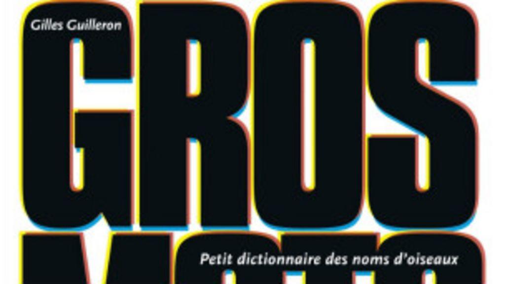 Dicionário de palavrões vira sucesso editorial na França - BBC Brasil