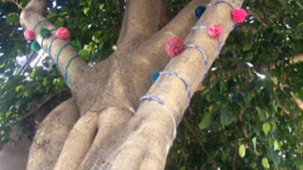 Árvores de São Paulo ganham 'roupas' de tricô e crochê - BBC Brasil