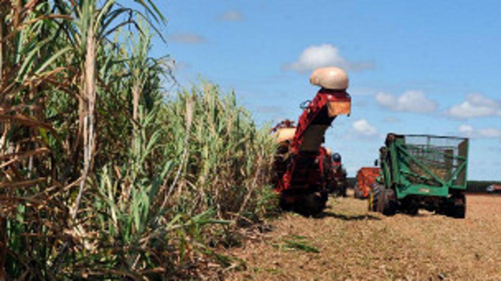 Acordo da OMC 'reforça opção do Brasil pelo multilateralismo' no ...