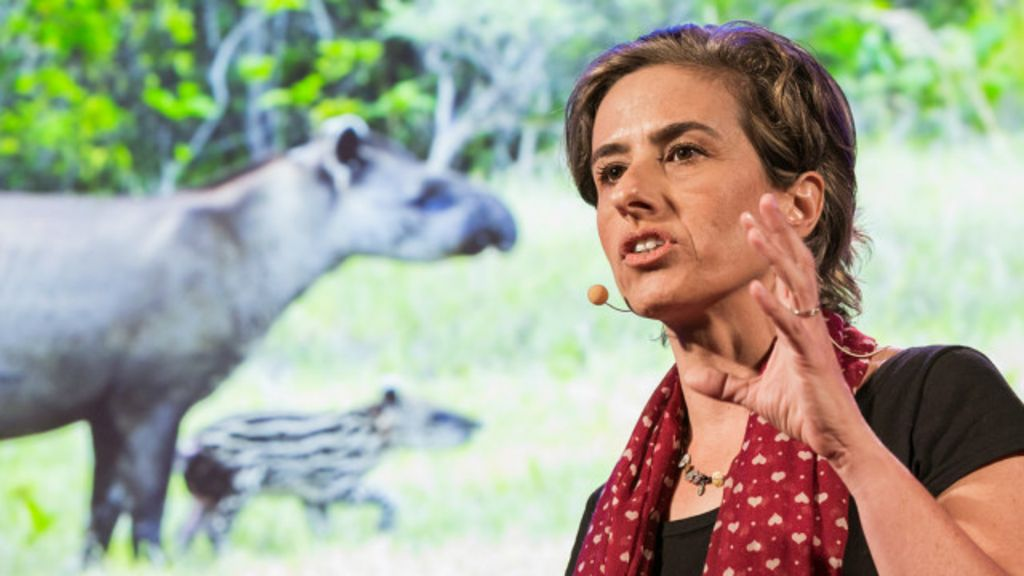 Na abertura do TED no Rio, a busca de jovens pela apresentação ...