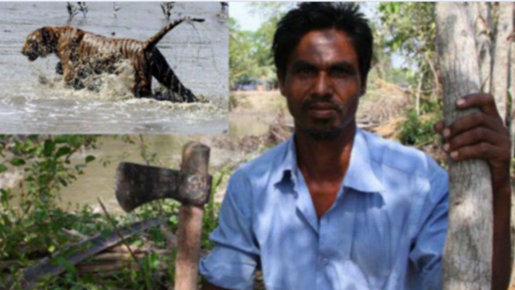 Homem vira 'lenda' por sobreviver a três ataques de tigres em ...
