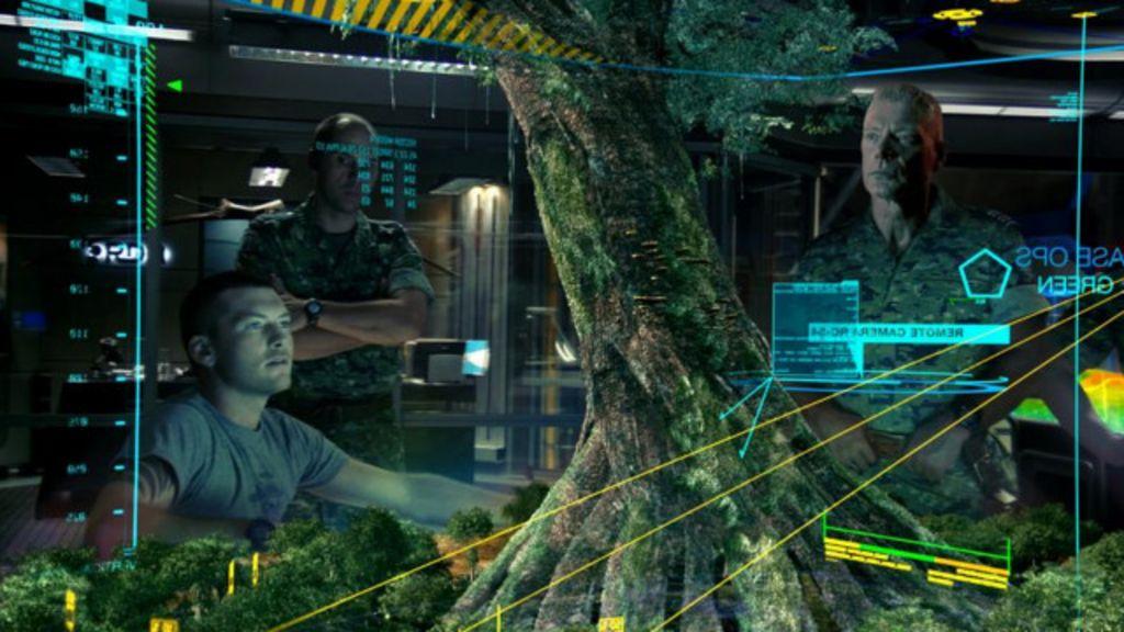 Plantas se comunicam e ' brigam' usando 'internet de fungos' - BBC ...