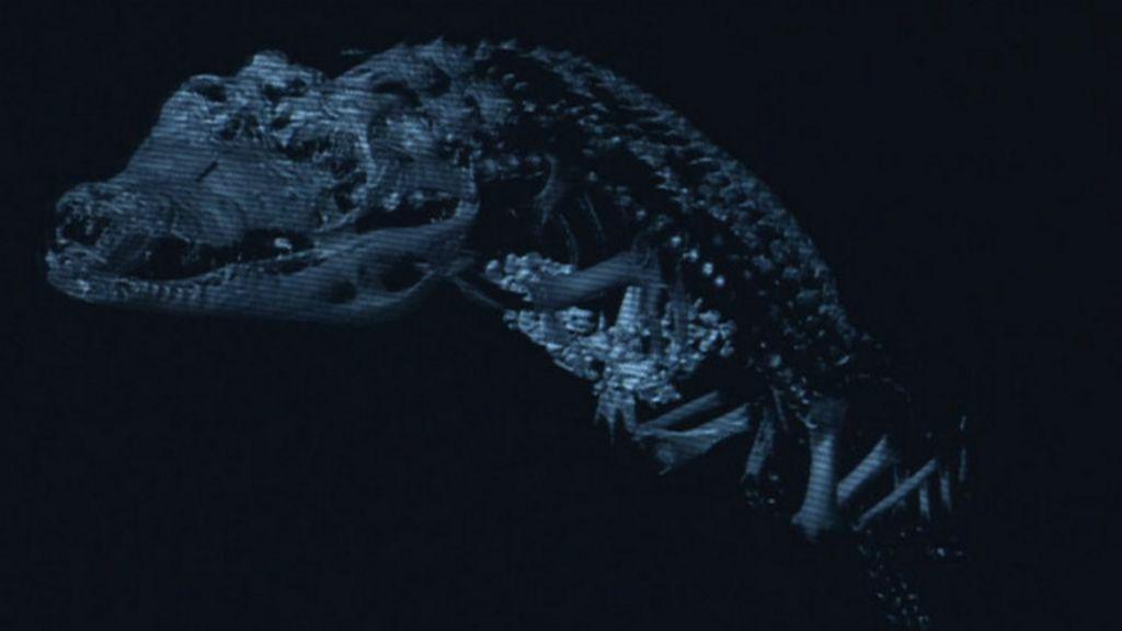 Cientistas britânicos desvendam mistério das múmias vazias - BBC ...
