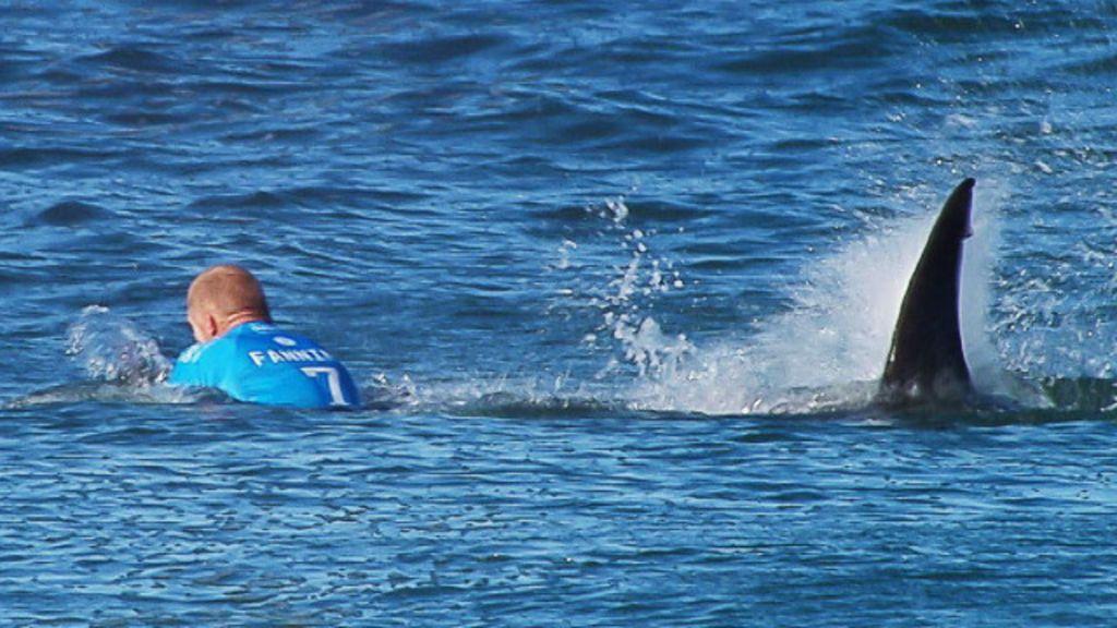 Paródia de ataque de tubarão irrita mãe de surfista australiano ...