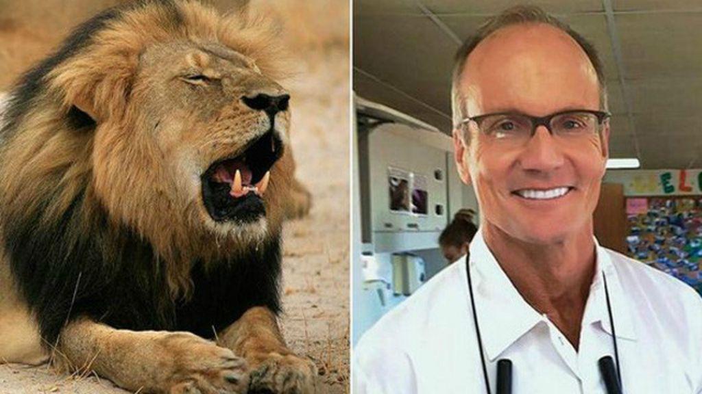 Zimbábue pede extradição de americano que matou leão símbolo ...