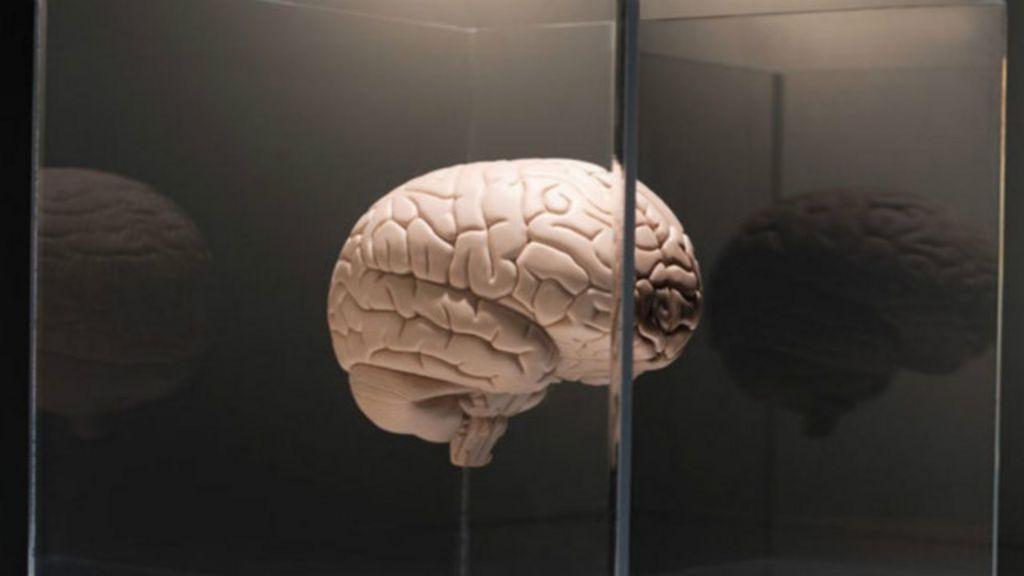 Seis dicas para manter o cérebro sempre jovem - BBC Brasil