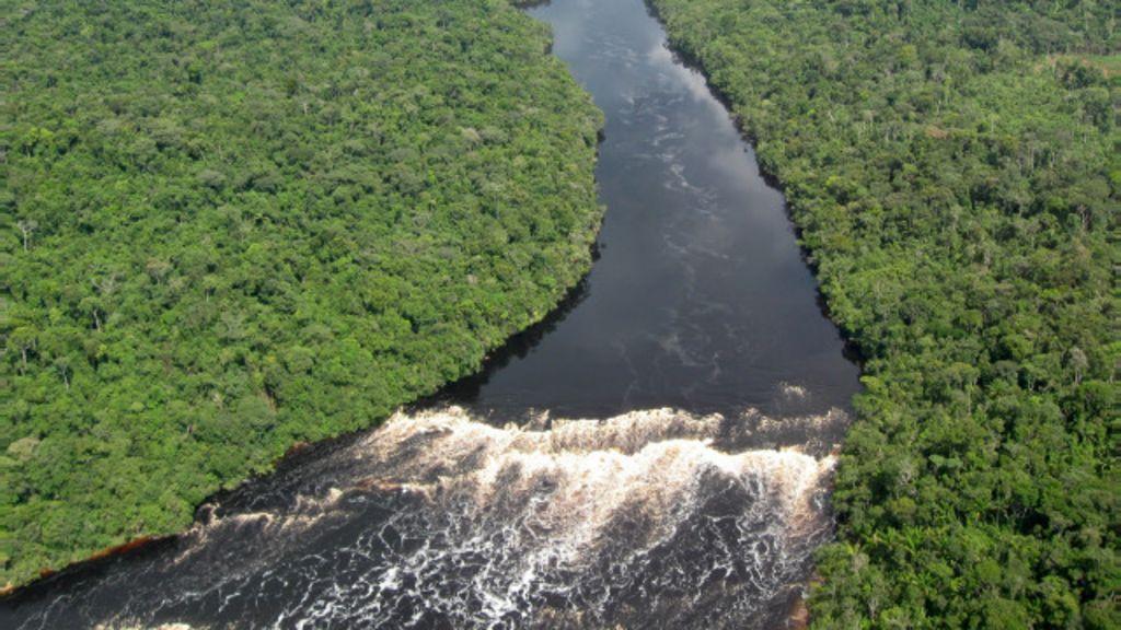 Plano climático do Brasil não teve 'pedalada florestal', diz ministra ...